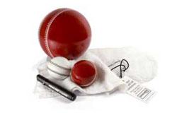 cricket autograph ball